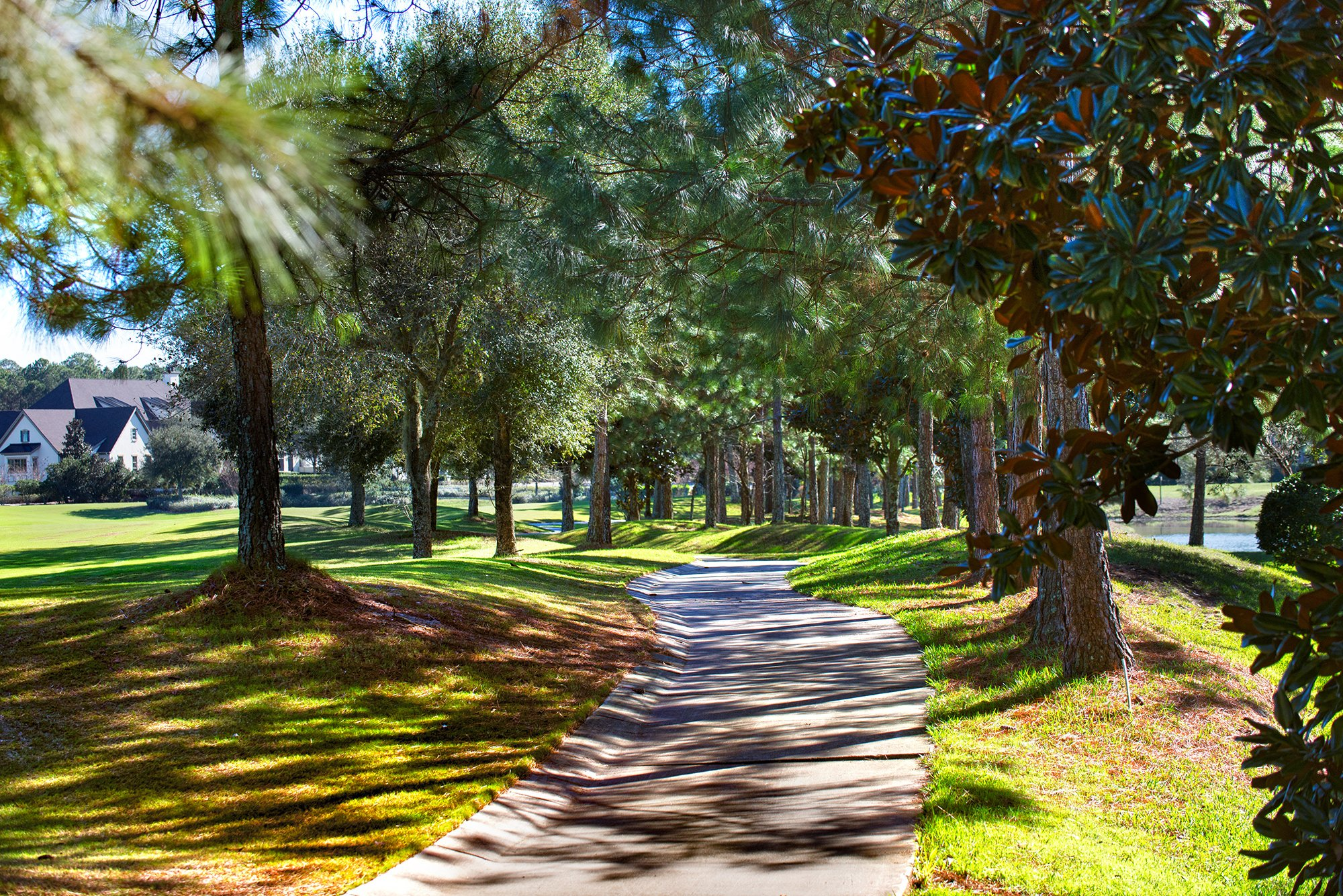 Pathway at Amelia National Golf and Country Club
