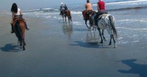Amelia National Bucket List: Horseback Riding at the Beach