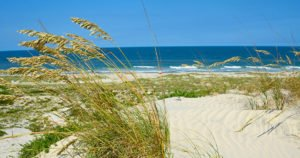 Take an Amelia Island Tour or Build Your Own