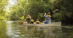 Get on the Water: Local Paddling Guide for Amelia National Residents
