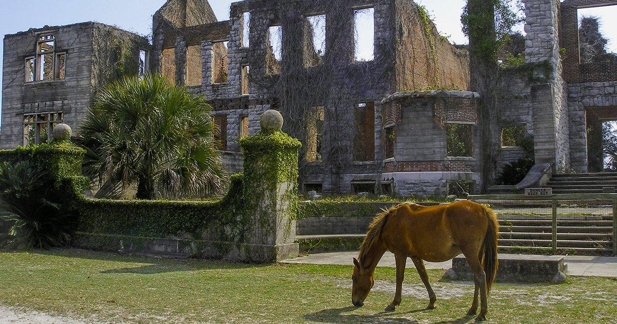 Cumberland Island ruins