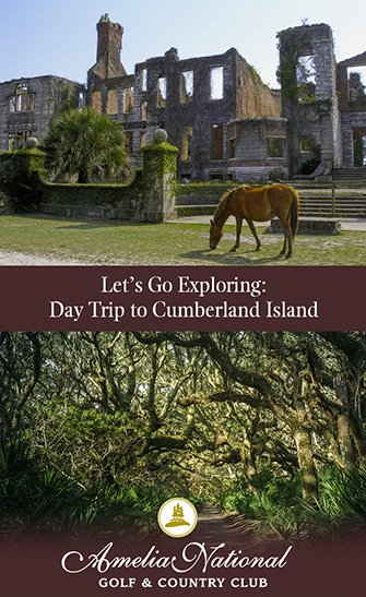 Let's Go Exploring: Day Trip to Cumberland Island