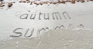 How Amelia National Residents Enjoy Fall in Northeast Florida