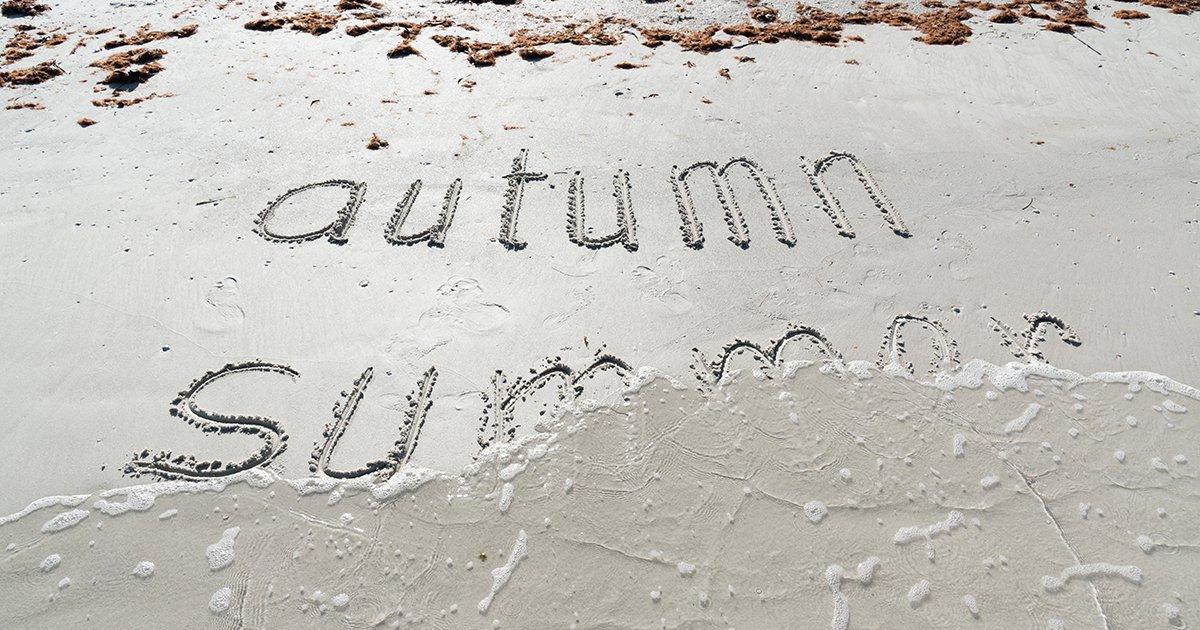 How Amelia National Residents Enjoy Fall in Northeast Florida - autumn